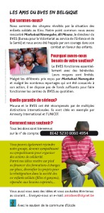BVES flyer2013-docdef - copie_Page_2